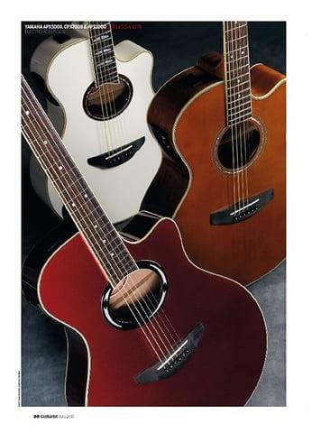 Guitarist Yamaha APX1000