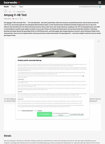 Bonedo.de Ampeg V-4B Test