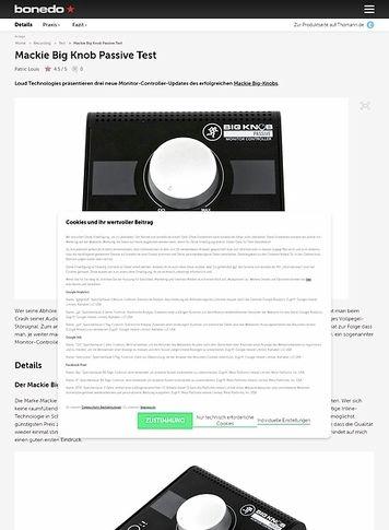 Bonedo.de Mackie Big Knob Passive