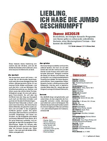 Gitarre & Bass Ibanez AE205JR