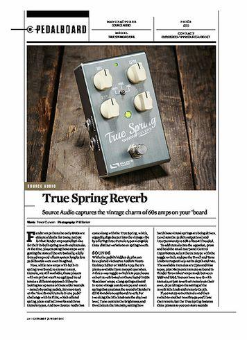 Guitarist True spring Reverb