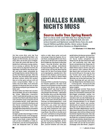 Gitarre & Bass Source Audio True Spring Reverb