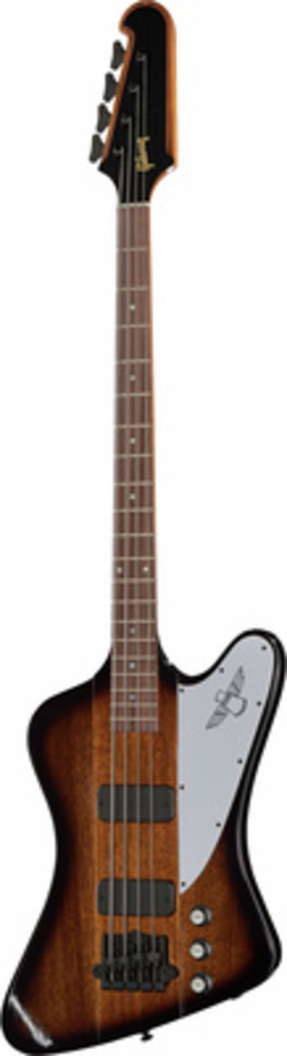 Thunderbird Bass 2018 VS Gibson