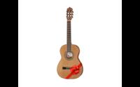Akustiset kitarat