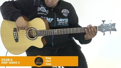 Ortega D 538-4