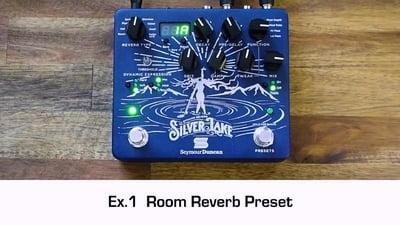 Seymour Duncan Silver Lake Dynamic Reverb
