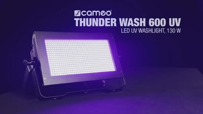 Cameo Thunder Wash 600 UV