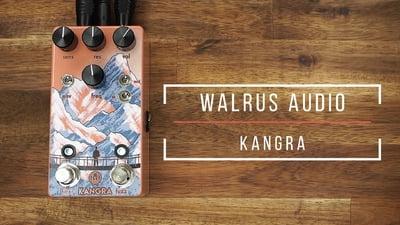 Walrus Audio Kangra Fuzz FX