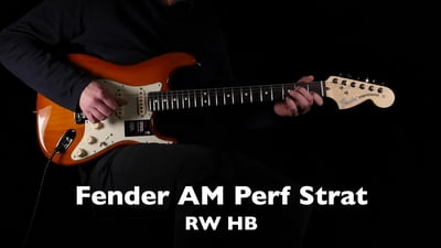 Fender American Performer Stratocaster RW HB