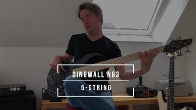 Dingwall NG3 Nolly Sig.5 Metallic Black