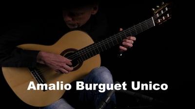 Amalio Burguet Unico