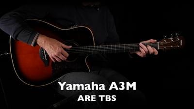 Yamaha A3M ARE TBS