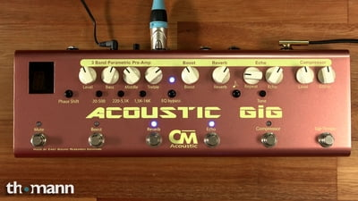 Carl Martin Acoustic Gig