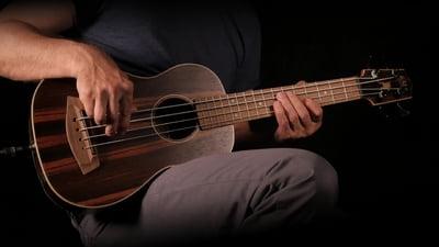 Kala Elektro-akustischer U-Bass