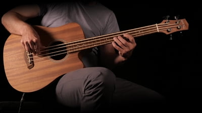 Gold Tone Micro Bass 25 Fretless