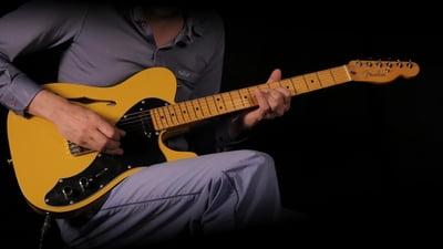 Fender Britt Daniel Telecaster Thinline MN AMG