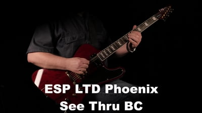 ESP LTD Phoenix See Thru Black Cherry
