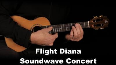 Flight Diana Soundwave Concert