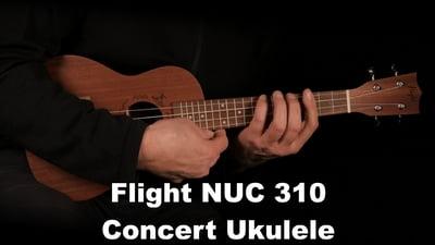 Flight NUC 310 Concert Ukulele