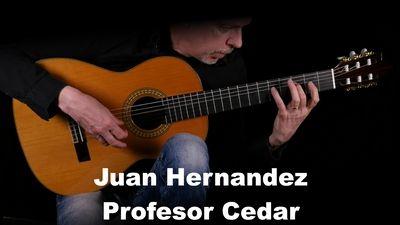 Juan Hernandez Profesor Cedar